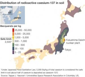 [ 日本の土壌の汚染状況 : セシウム137 ]